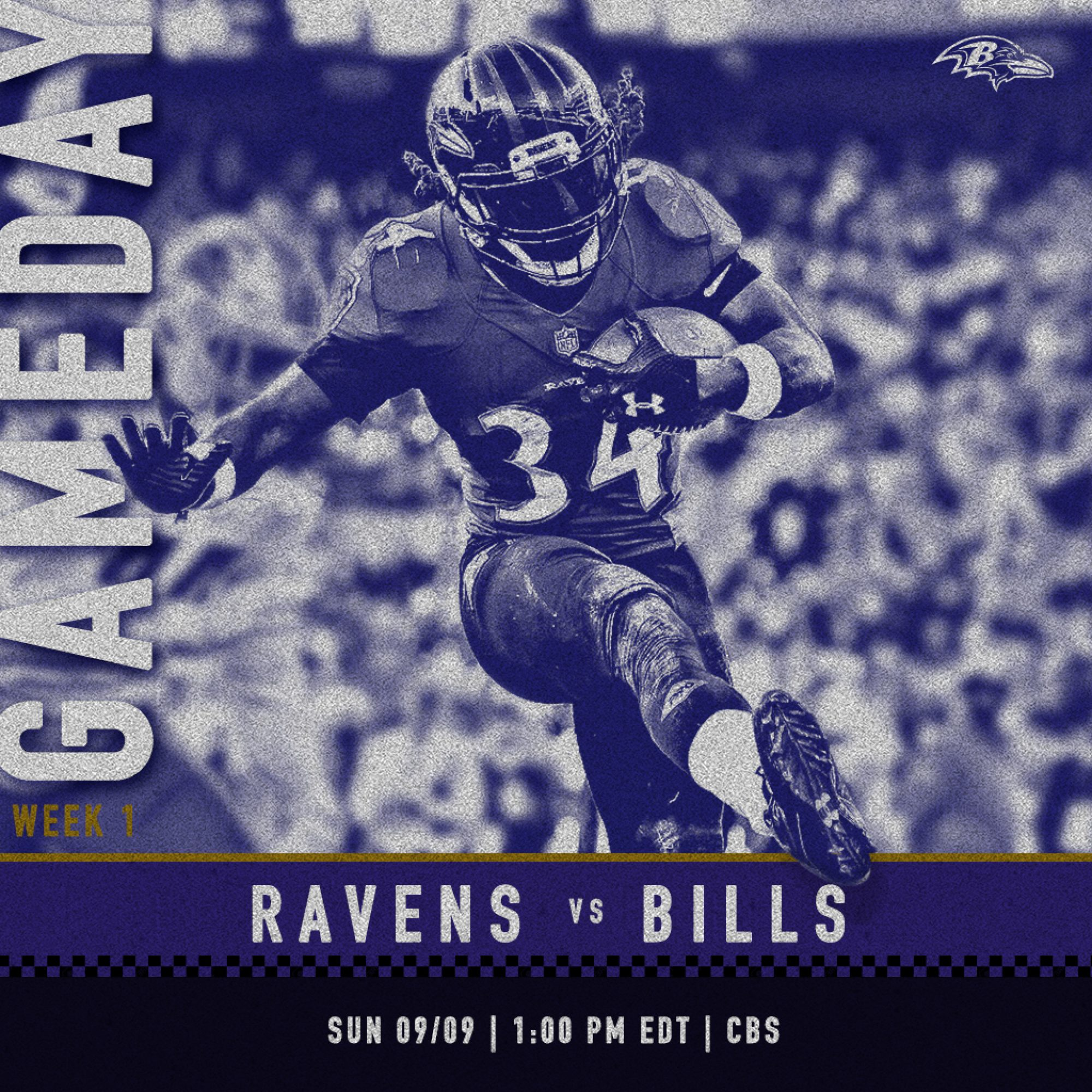 ravens_monotone_gameday_squ